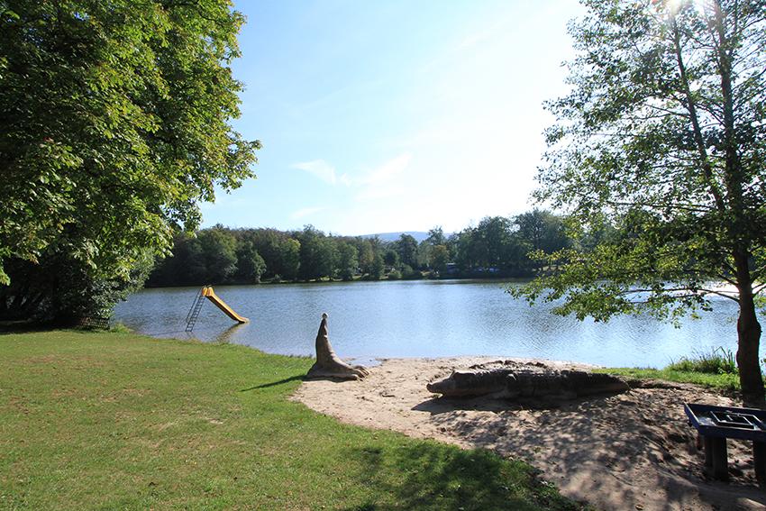 Hundefreundlicher Stellplatz am Altenberger See im Thüriger Wald